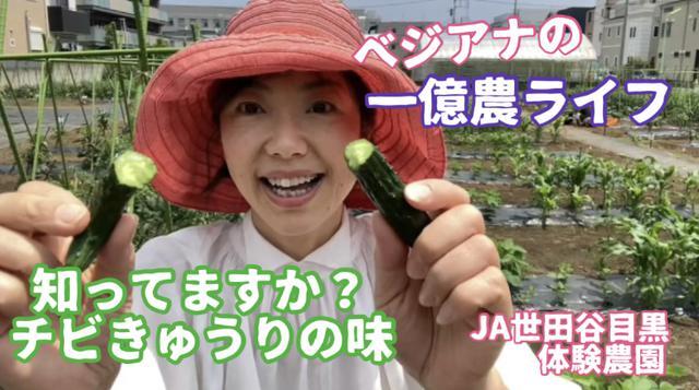 画像: 知ってますか?もぎたてチビきゅうりの味。小さい方が絶対おいしい!味が濃いだけでなく