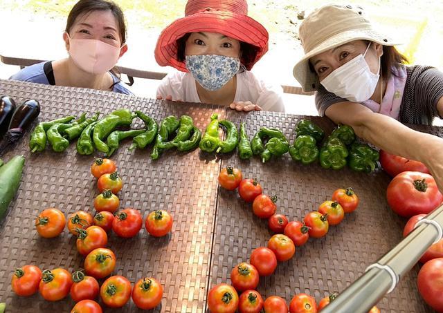 画像: お庭で育てる夏野菜!せたがや体験農園~夏野菜の収穫まっさかり!トマトを並べてベジ文字作りました♪