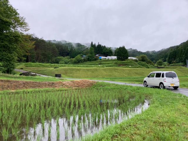 画像: 台風の中人はなぜ用水路に落ちるのか