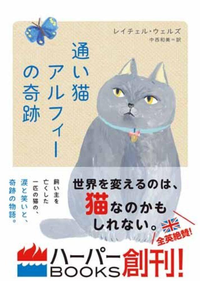 画像: 猫好き必読! 実は人間思いな猫の気持ちが分かる「通い猫」のハートフル猫ストーリー!