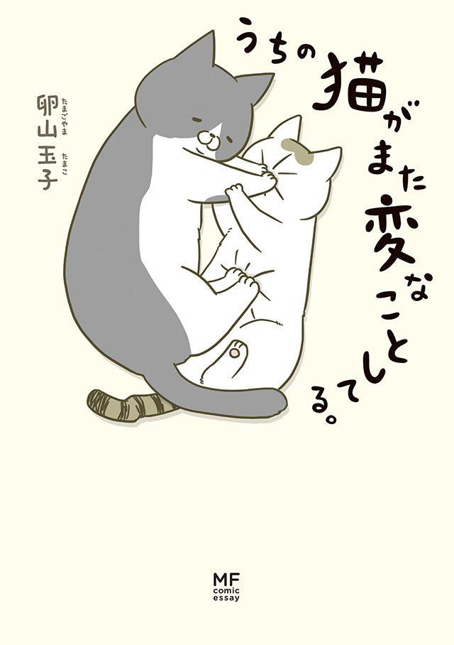 画像: アメブロ猫ランキング1位の猫マンガ『うちの猫がまた変なことしてる。』オールカラーで発売!