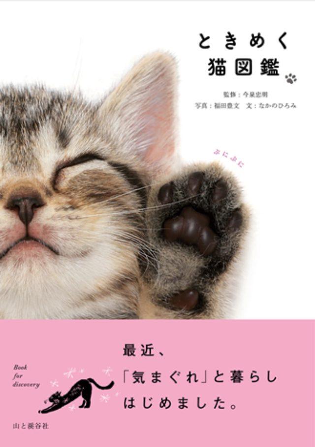 画像: かわいいだけじゃない! 人との関わりや猫語なども紹介する猫好きのための新感覚図鑑