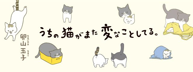 画像: 【連載】うちの猫がまた変なことしてる。 第7回「どうしてもくっつけたい」