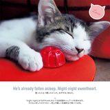画像: 猫に癒やされながら今どき英語を学ぼう!『ニャングリッシュ 猫のつぶやき英会話』