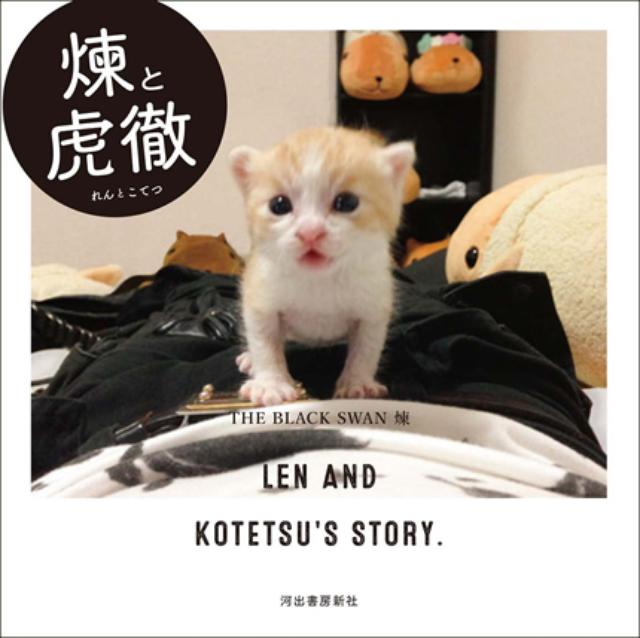 画像: 生まれたての赤ちゃん猫とヴィジュアル系バンドマンの異色すぎるコンビが話題!
