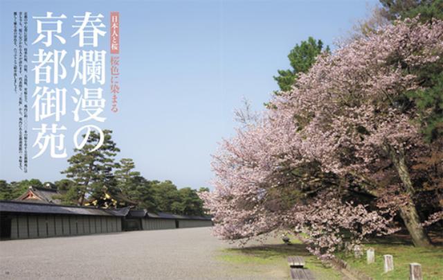 画像: 春爛漫の京都御苑 ・ベルリンに咲くSAKURA・日本全国「名桜」遺産―『家庭画報 4月号』は3大桜特集
