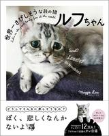 画像: 可愛すぎる困り顔に世界中が胸キュン! 『世界一さびしそうな顔の猫 ルフちゃん』の写真集発売