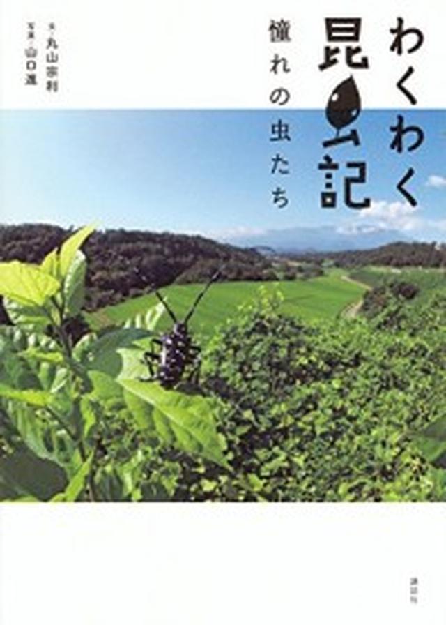 画像: 「ジャポニカ学習帳」の昆虫写真家×大人気の昆虫学者の『わくわく昆虫記』! 憧れの虫たちに出会えるフォトエッセイ