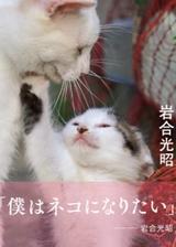 画像: 心奪われた世界中の愛すべき猫たちに贈る、動物写真家・岩合光昭のエッセイ写真集