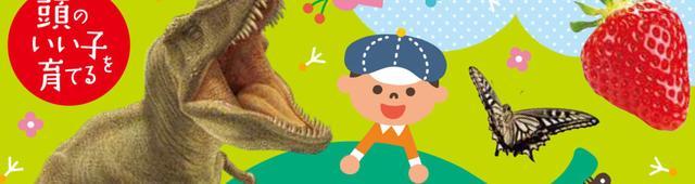 画像: 「コアラの赤ちゃんはなぜうんちを食べるの?」子どものギモンに答えられないときに...