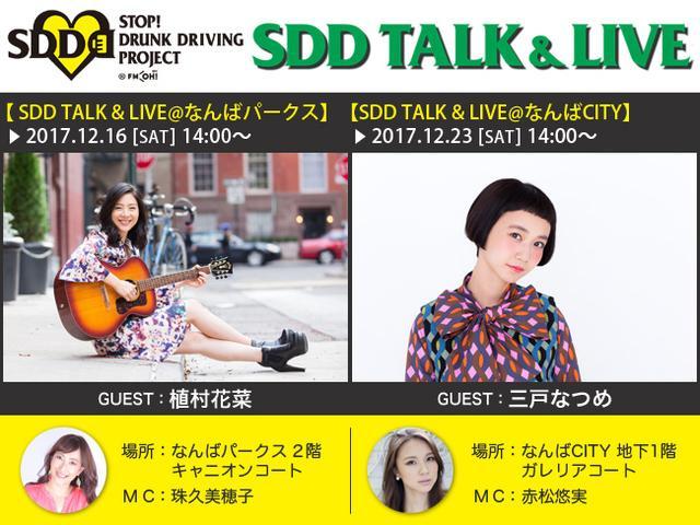 画像: 「SDD TALK&LIVE」開催のお知らせ