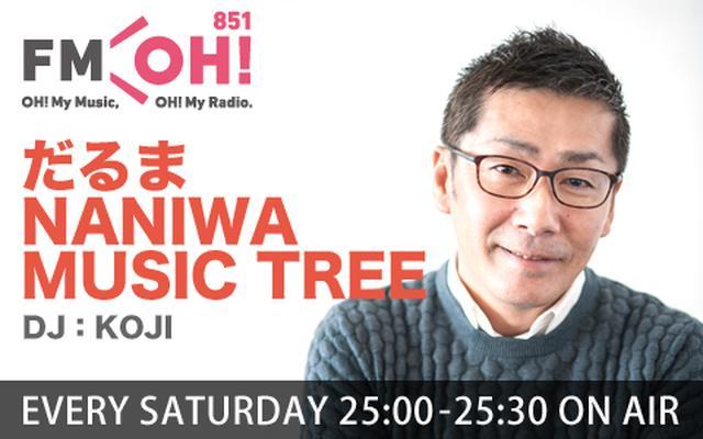 画像: だるま NANIWA MUSIC TREE
