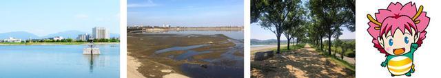 画像: 写真協力:<狭山池の情報サイト「ポンポンさやポン」> https://sayapon.com/ 写真左から2番目「こちらの写真は2018年12月頃の池干しの様子です。」 写真右端「大阪狭山市マスコットキャラクターさやりん」