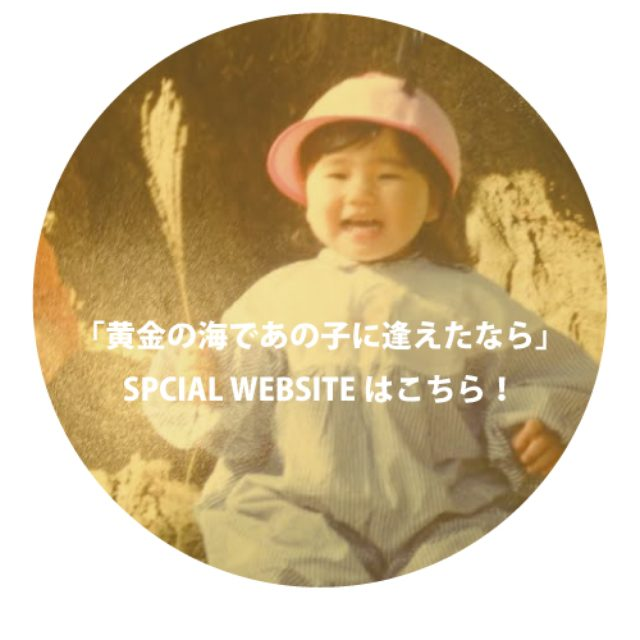 画像: 関取花の新しいホームページ