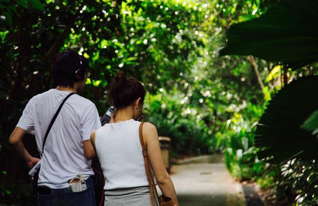 画像: 園内はすべて徒歩で回れます。 森の中にいるようです。 広大な敷地なのでトラムもあります。 チケットを買って乗って下さい。 突然のスコールに備えて、折りたたみ傘の用意も忘れずに!