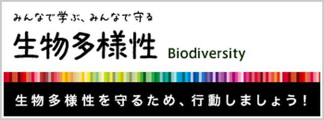 画像: <5月編>5月22日は世界中で生物多様性について考える日。2017年5月~6月のイベントに、あなたもぜひご参加を! | 生物多様性.com