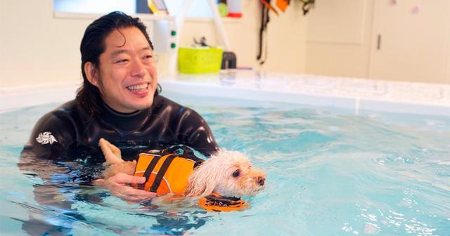 画像: 犬の平均寿命は30年で約2倍に!知られざる超高齢化の実態