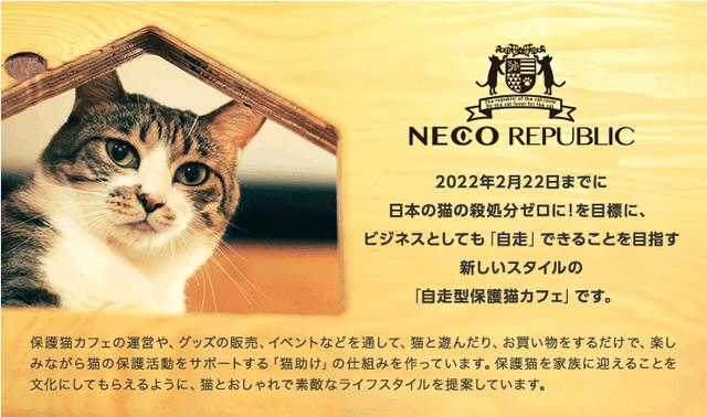 画像: ネコリパブリック:里親探しの自走型保護猫カフェ
