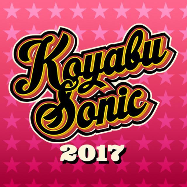 画像: KOYABU SONIC 2017 supported by タウンワーク