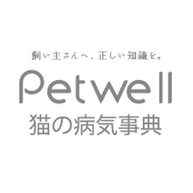 画像: 猫の熱中症(熱射病、日射病) | 猫の病気事典 | Petwell(ペットウェル)