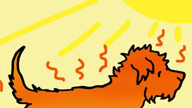 画像: 犬だって、気をつけたい「熱中症」。
