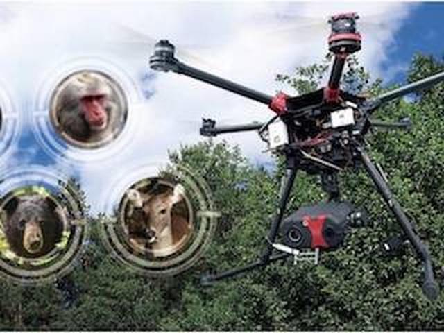 画像: スカイロボット、ドローンで害獣対策を行うサービス「SKY ANIMALS」を開始
