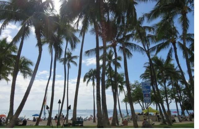画像2: 結婚5周年記念!H.I.Sを利用しての初ハワイ旅行へ!