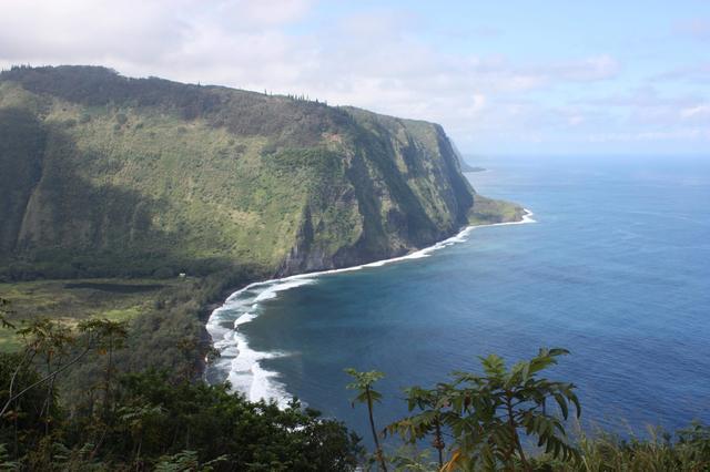 画像9: リスナー和代さんのハワイ滞在記