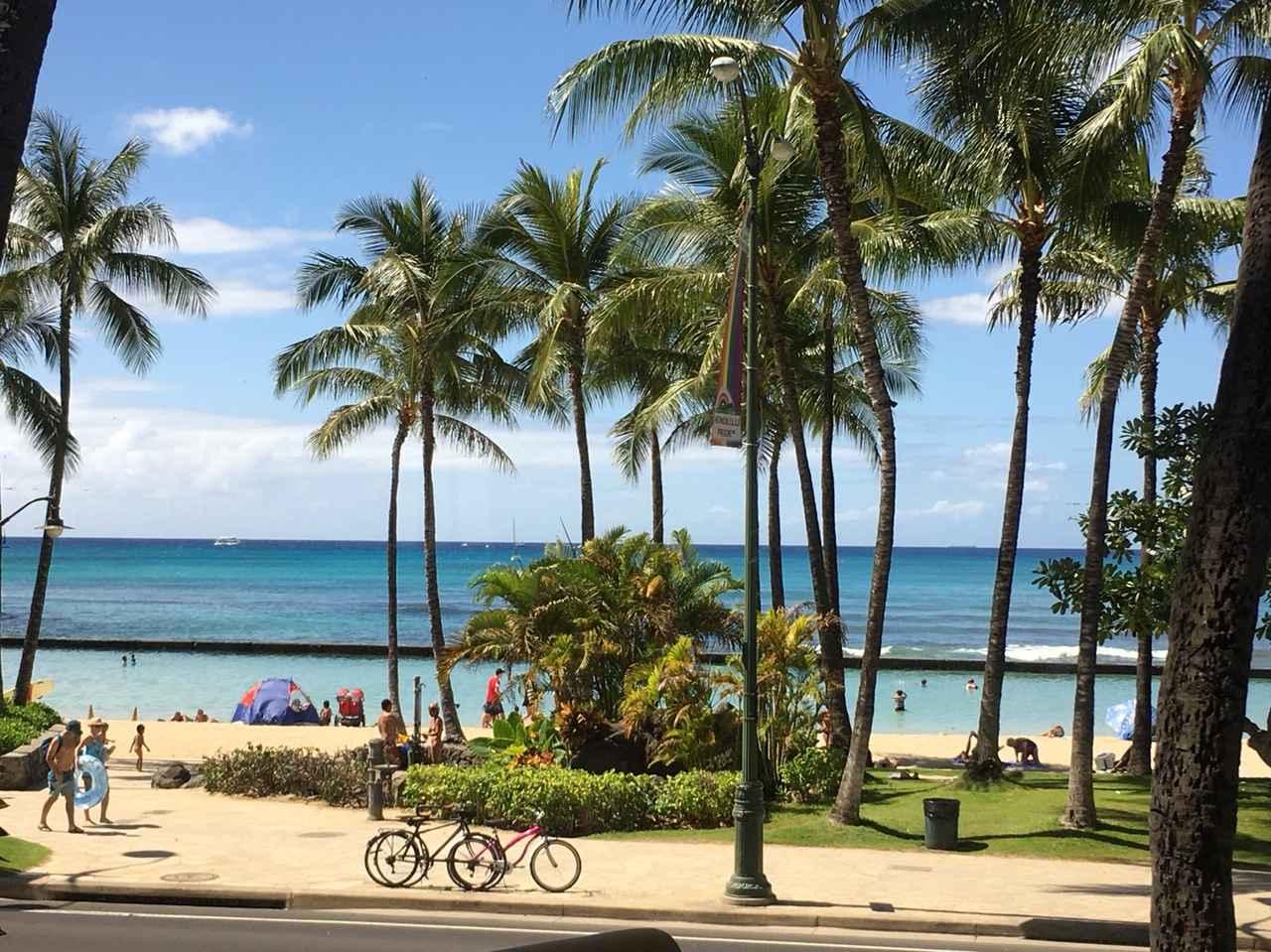 画像8: 3/19(月) Aloha Flap