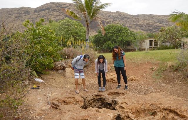 画像7: ハワイ体験記