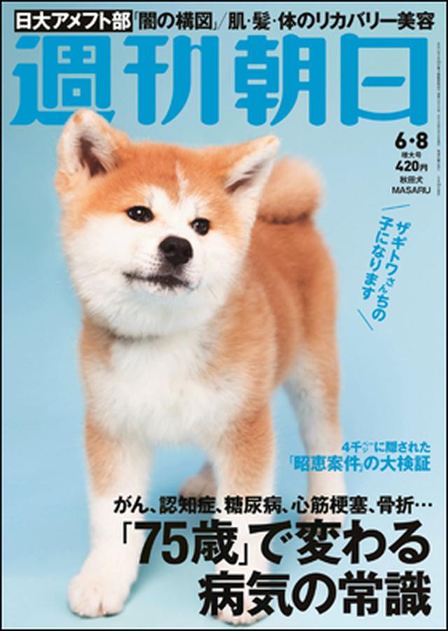 画像: 表紙に犬?!