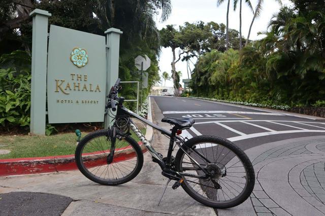 画像5: ひろみさんのハワイ滞在記