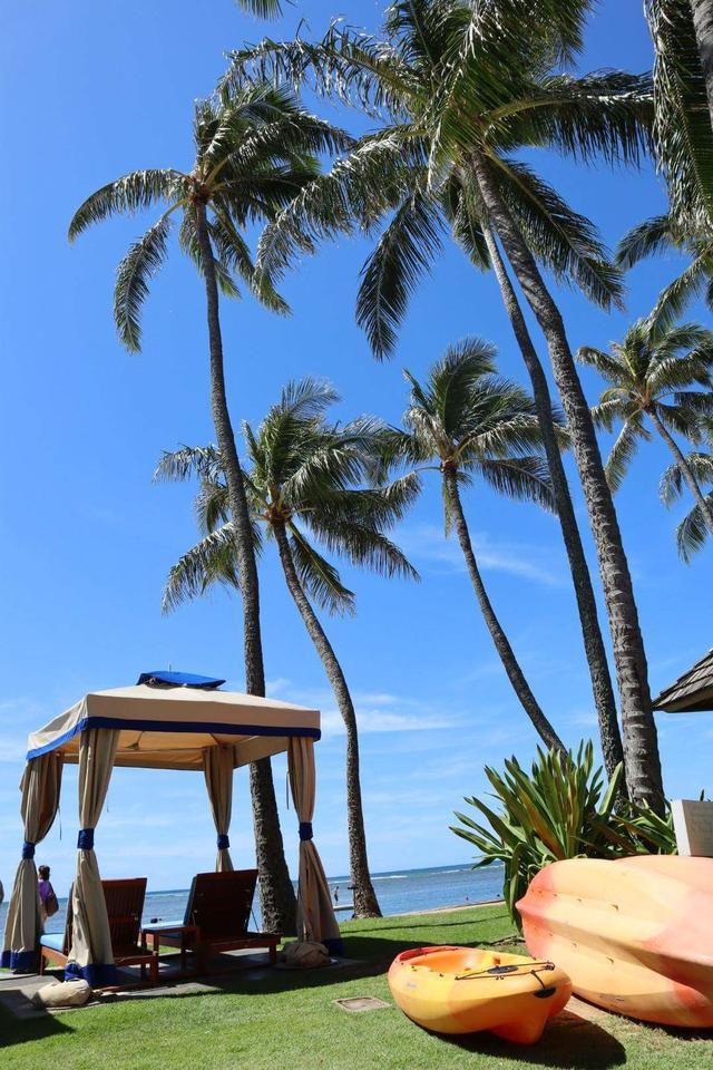 画像2: ひろみさんのハワイ滞在記