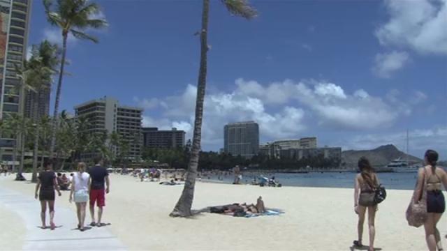 画像: ハワイで日焼け止め販売禁止へ、サンゴの保護目的