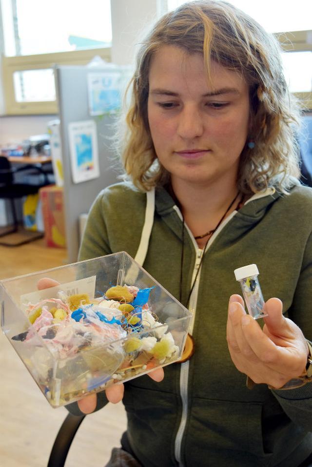 画像: プラスチック危機:海鳥9割に異物 40年前、異変の兆候 - 毎日新聞