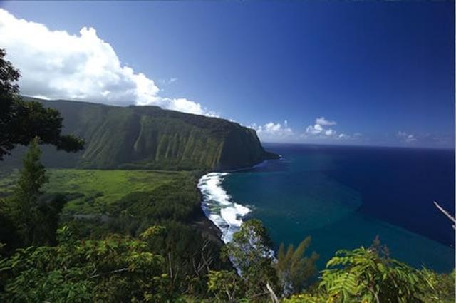 画像: H.I.S. 海外旅行 ハワイアン航空利用!ハワイ島&ホノルル7日間[ハワイ島:ロイヤル・コナ/部屋指定なし、ホノルル:オハナ・ワイキキ・マリア・バイ・アウトリガー/部屋指定なし](海外ツアー/Ciao)