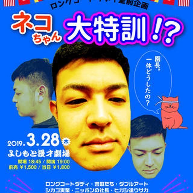 画像: 3/28(木)「ロングコートダディ堂前企画「ネコちゃん大特訓!?」」