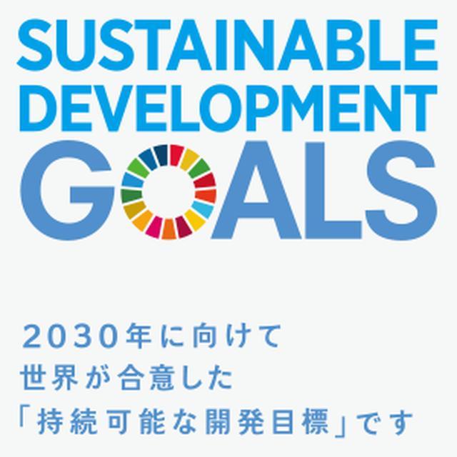 画像: SDGsとは? | JAPAN SDGs Action Platform