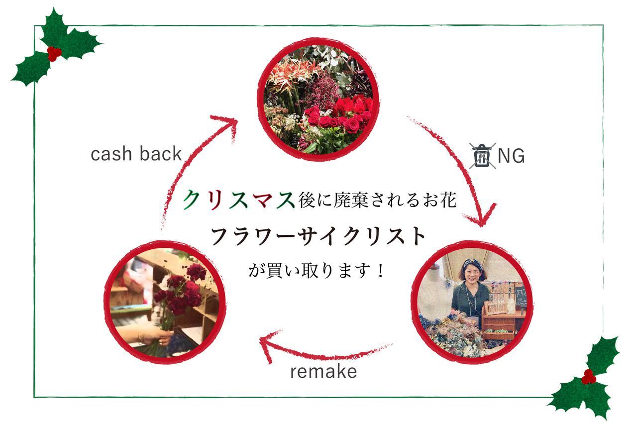 """画像: クリスマス後に廃棄される花、""""フラワーサイクリスト""""が『半値』で買い取ります!"""