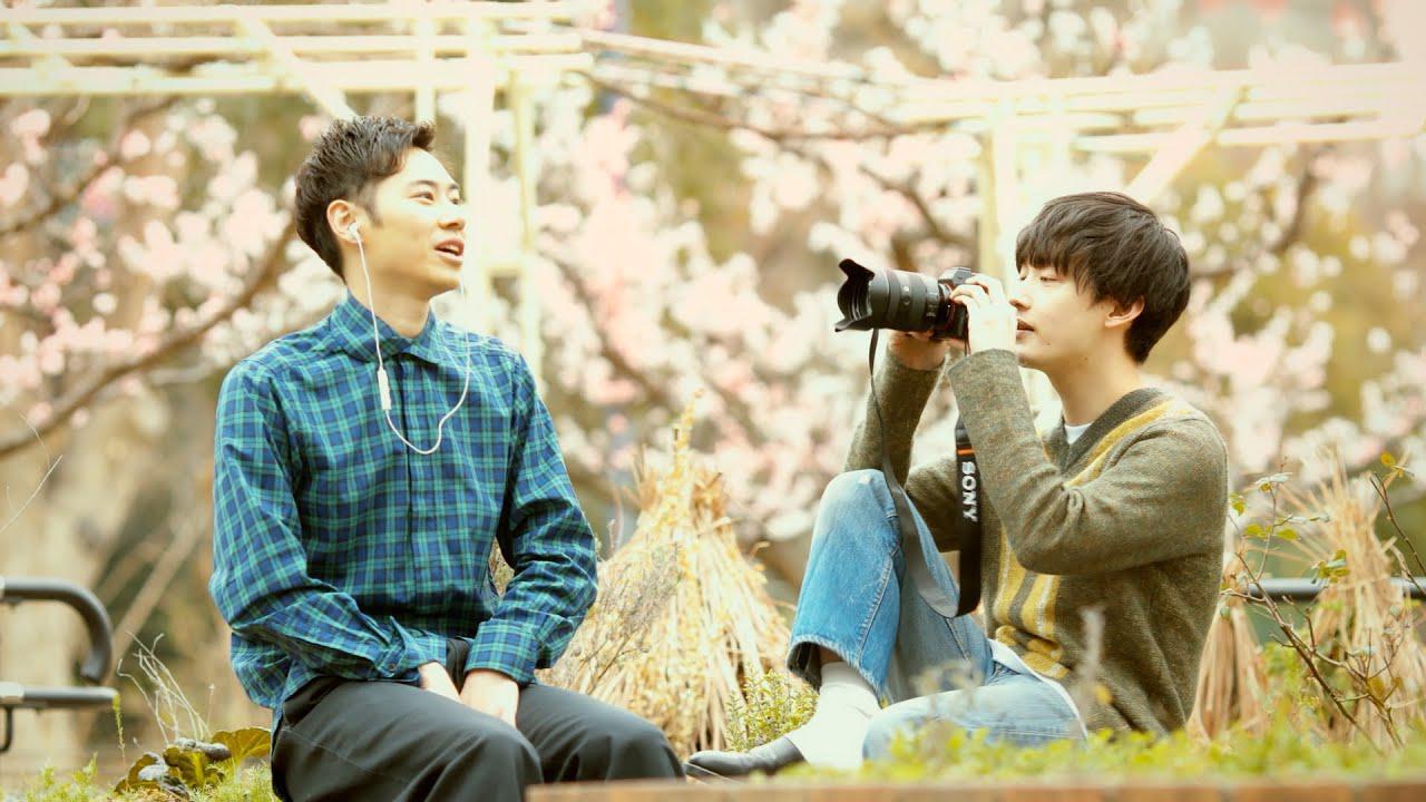 画像: 向井太一 / Colorless(Official Music Video) www.youtube.com
