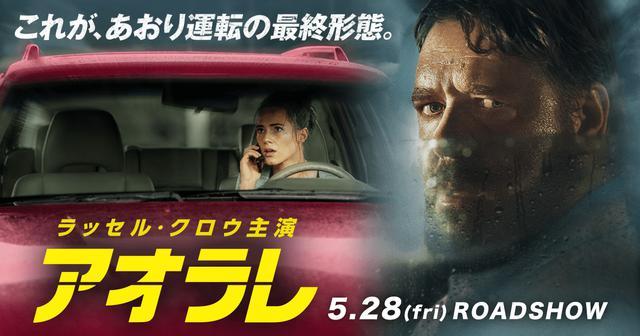 画像: 映画『アオラレ』    5.28(fri)ROADSHOW