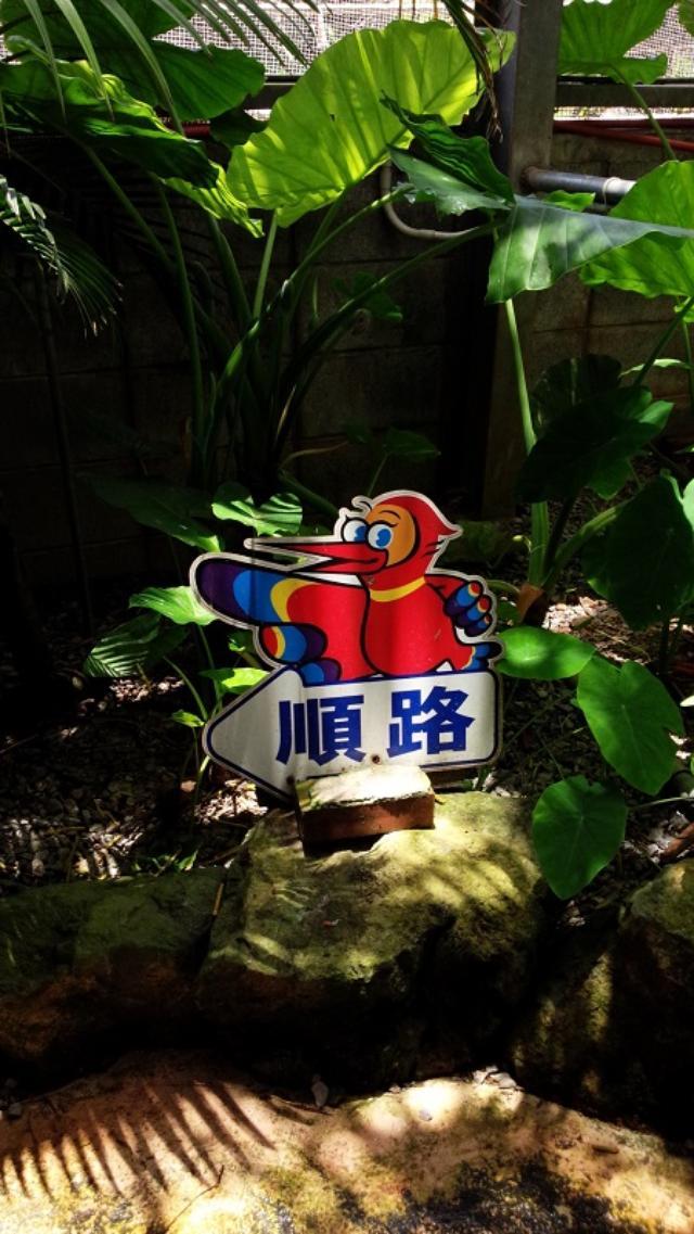 画像13: 大西ユカリと行く!Peace&Soul ええやん沖縄3Days(2日目)
