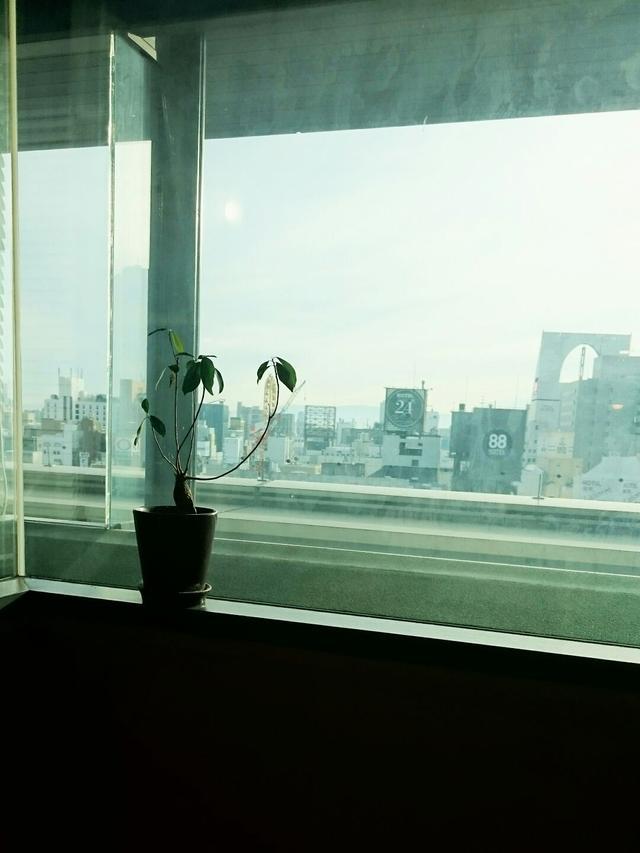 画像: 冬の朝です・・・なんだか少し寂しさを感じます・・・