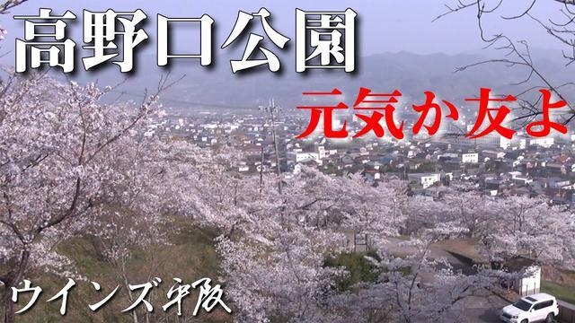 画像: おやじソング「元気か友よ」ウインズ平阪 (歌詞付きMV) youtu.be