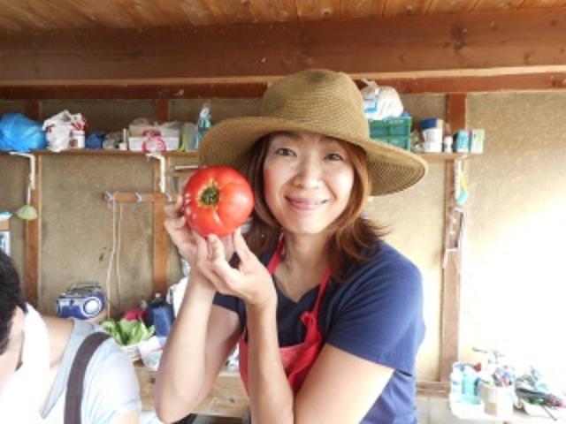 画像: チカちゃんとこのとれたてトマトはこんなに大きい!!