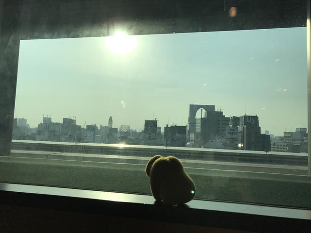 画像: 今日の『はぐたす』!!