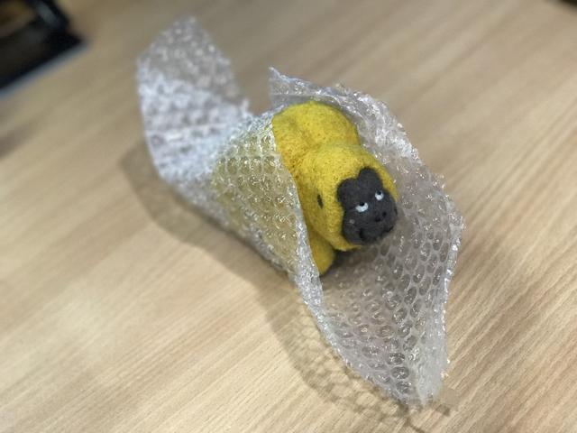 画像: 大森さんの羽織るものは・・・プチプチ?