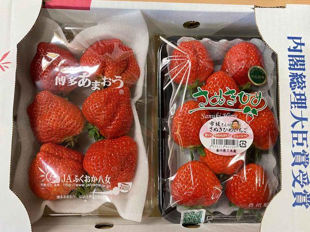 画像: 今日は 【「市坂さんのさぬき姫 苺」と「あまおう」の食べ比べセット】 を3名様にプレゼント!