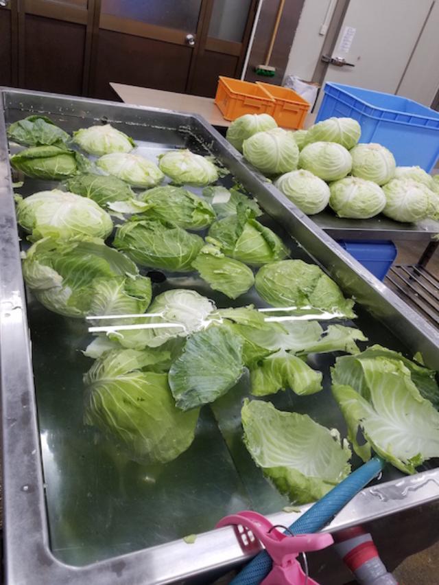 画像1: 今回は大阪王の餃子のおいしさの秘密に迫ろう! ということで大阪市鶴見区にある 大阪王 製造工場直売店を取材させていただきました!