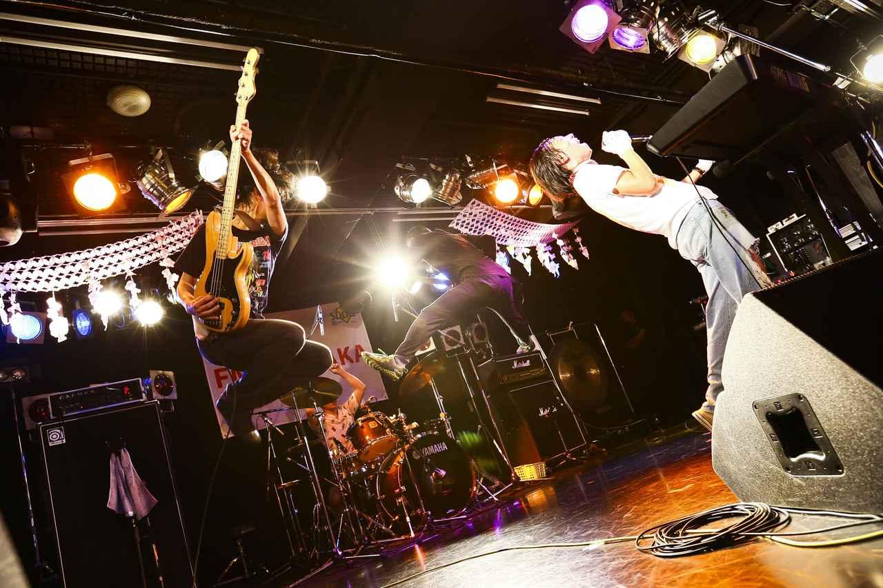 画像1: photo by オイケカオリ